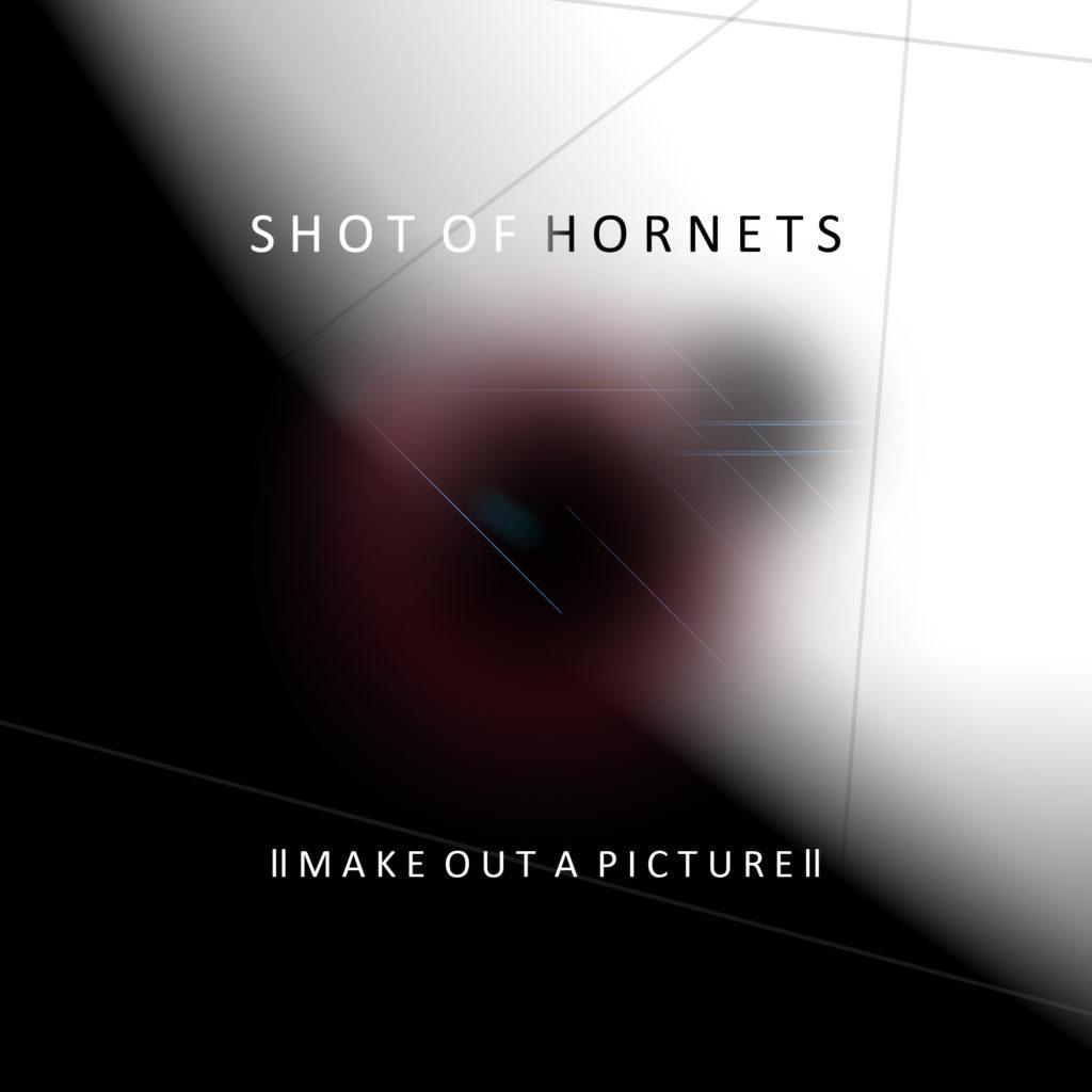 shot-of-hornets